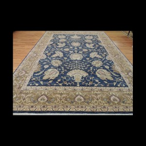 Beautiful Peshawar Transitional Oriental Area Rug 9 x 12