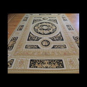 Bold Large French Aubusson Style Oriental Area Rug 10 x 14